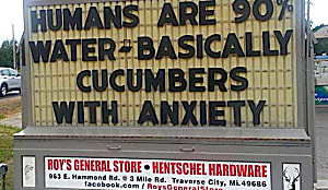 These Funny Signs You Can't Un-See
